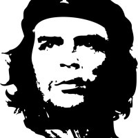 Che Guevara's Revolution in Pop Culture