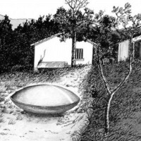 The Trans-en-Provence UFO Sighting