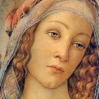 Simonetta Vespucci and Quattrocento Femininity